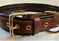 Six Reasons Many Dog Owners Opt for Leather Dog Collars
