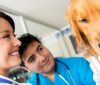 How to choose the best vet for your pet