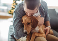 Making The Decision to Choose Pet Euthanasia